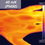 PI450 hand thermal image